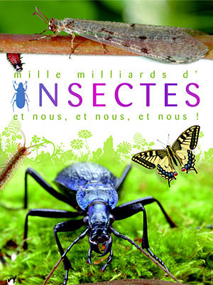 mille milliard d'insectes